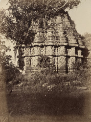 [Kedaresvara Temple, overgrown with vegetation, Halebid.]